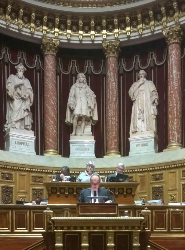 Vincent Capo-Canellas - Sénat - nov 2014