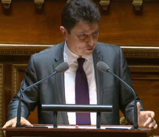 « Tout le monde réclame davantage de simplicité », Olivier Cadic, Sénat, 22 juin 2015